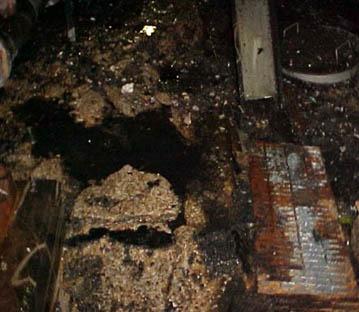 ISP 6D Process Area Floor & Mezzanine