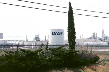 BASF Banvel & J300